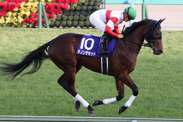Photos: ダノンザキッド 返し馬(20/12/26・第37回 ホープフルステークス)