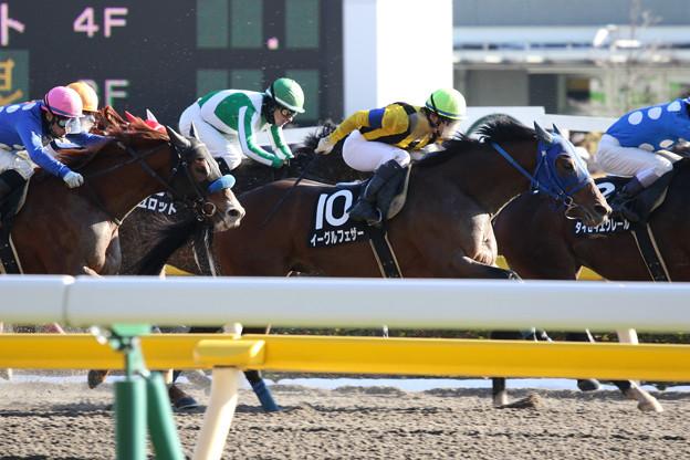 イーグルフェザー レース(18/01/27・銀蹄ステークス)