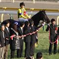 Photos: 第30回 フェブラリーステークス 口取り(13/02/17)