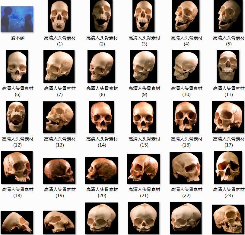 52张高清人头骨素材