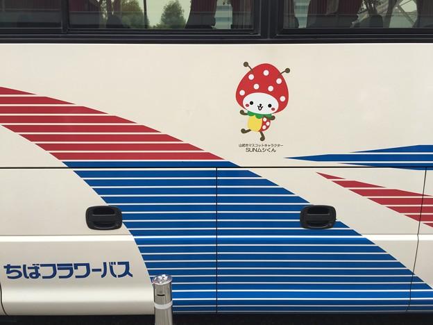 山武市マスコットキャラクター SUNムシくん ちばフラワーバス