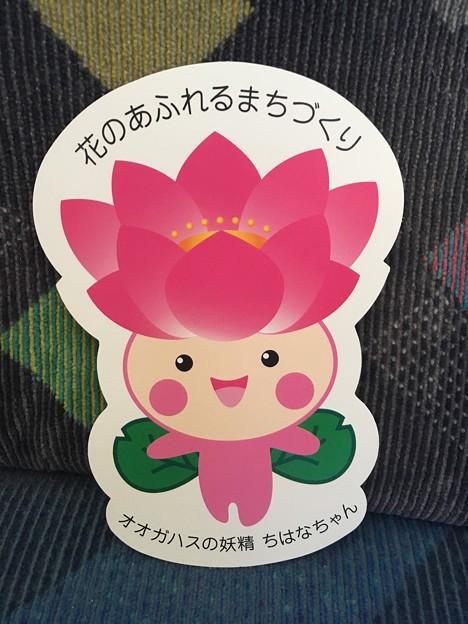 ちはなちゃん ダイカットしおり(表)