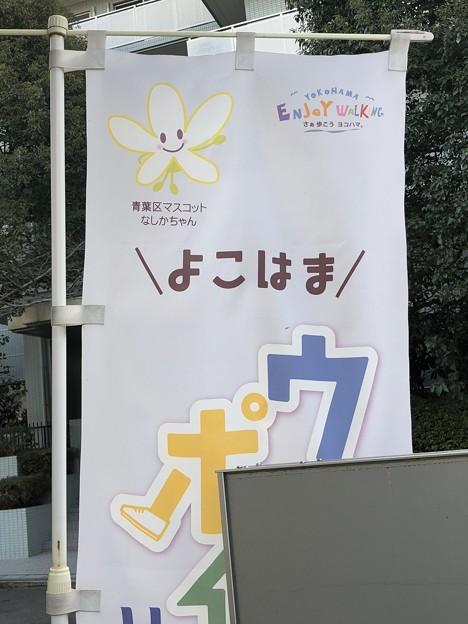 Photos: 横浜市 青葉区マスコット なしかちゃん
