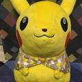 Photos: 一番くじ Pokémon Textile Design A賞 ピカチュウのぬいぐるみ~ブランケットスタイル~
