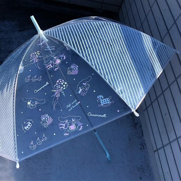 写真: シナモロール ビニール傘(ストライプ)