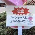 Photos: ちはなちゃん 注意 リーンちゃんにさわらないで! 海浜幕張駅