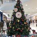 Photos: クリスマスツリー アリオ蘇我