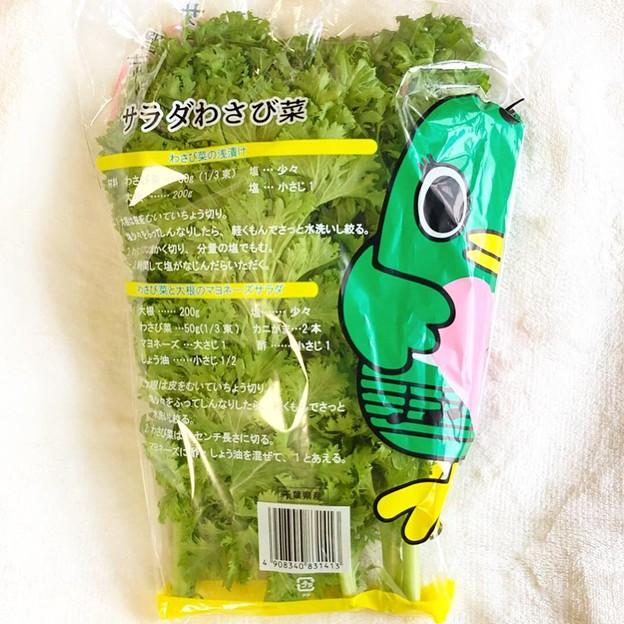 ナラシド♪ 習志野産サラダわさび菜