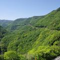 Photos: s5429_坪尻駅俯瞰遠景と国道32号線