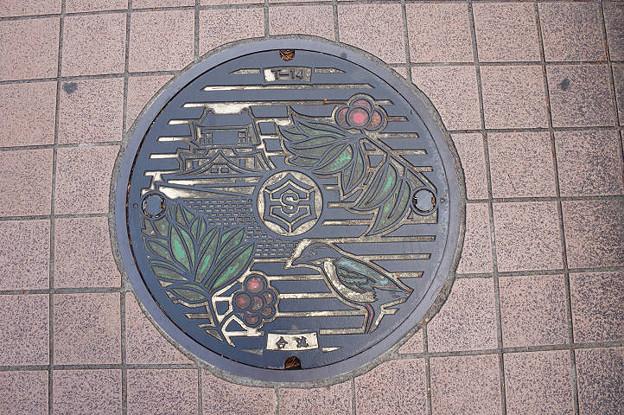 s5889_高知市マンホール_カラー_合流_高知城・センダン・何かの鳥柄