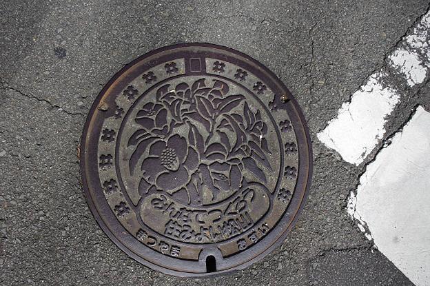 s6903_松山市マンホール_おすい_みんなでつくろう住みよい松山