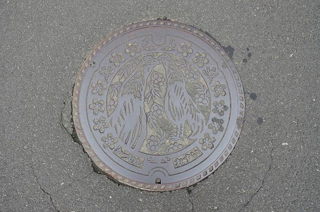 s0399_鹿角市マンホール_かづのし_おすい