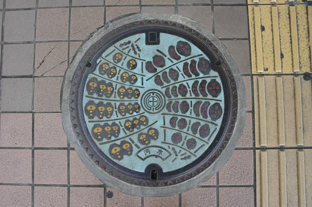s0950_秋田市マンホール_カラー水色地_汚水
