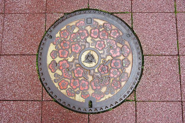 s7114_糸魚川市マンホール_カラー_旧市章_梅の花柄