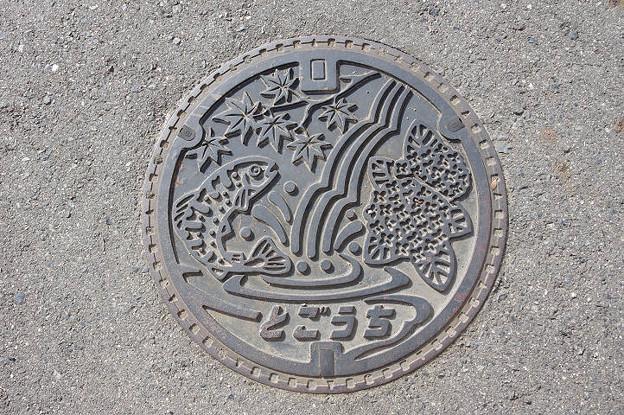 s9573_安芸太田町旧戸河内町マンホール_とごうち