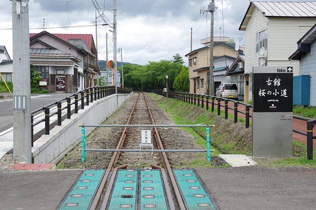 s0382_小坂町_古舘桜の小道