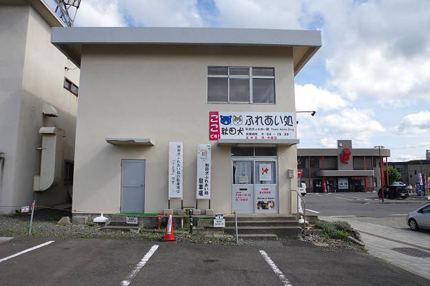 s0466_秋田犬ふれあい処外観_大館駅前