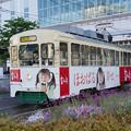 Photos: s7312_富山地鉄大学前行_7015_富山駅