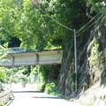 Photos: s9336_可部線廃線跡_殿賀~上殿_殿賀大橋北詰の西側