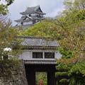 Photos: s4934_和歌山城岡口門からみた天守閣