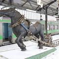 Photos: s5110_農業用馬木彫_岩見沢駅3・4番ホーム