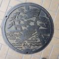 s0012_芦屋市マンホール_松と海柄
