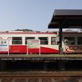 Photos: s3033_樽見鉄道ハイモ295-617側面_樽見_ct
