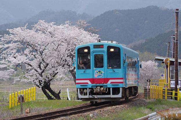 s3201_樽見鉄道8006列車快速大垣行_ハイモ330-701_木知原