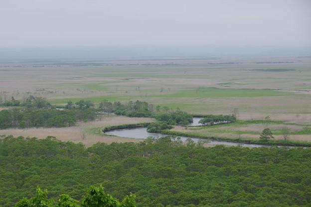 Photos: s4104_細岡展望台から釧路湿原を望む