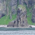 s4459_知床タコ岩