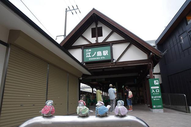 s4953_江ノ電江ノ島駅_車止めのスズメ