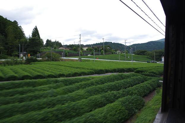 s9942_大井川鐡道車窓_茶畑_青部~崎平間