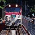 sA610_大井川鐡道402列車_DD205他_接岨峡温泉~奥大井湖上