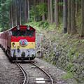 sA251_大井川鐡道車窓_206列車と閑蔵駅で交換