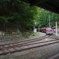 sA287_大井川鐡道207列車_DD203他_井川