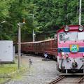 sA310_大井川鐡道208列車_DD203他_井川