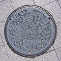 Photos: s9321_甲府市マンホール_おすい