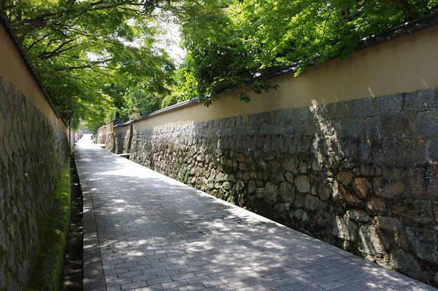 s6176_下関市長府惣社町~長府古江小路町境の石畳道