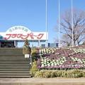 Photos: s6297_茨城県フラワーパーク_t