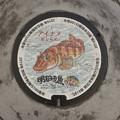 Photos: s8067_明石市マンホール_市制100周年_アイナメ