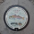 Photos: s8068_明石市マンホール_市制100周年_シロギス