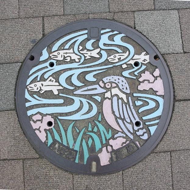 Photos: s3097_和泉市マンホール_あめ_カラー_t