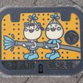 s3113_和泉市マンホール_消火栓カラー_t