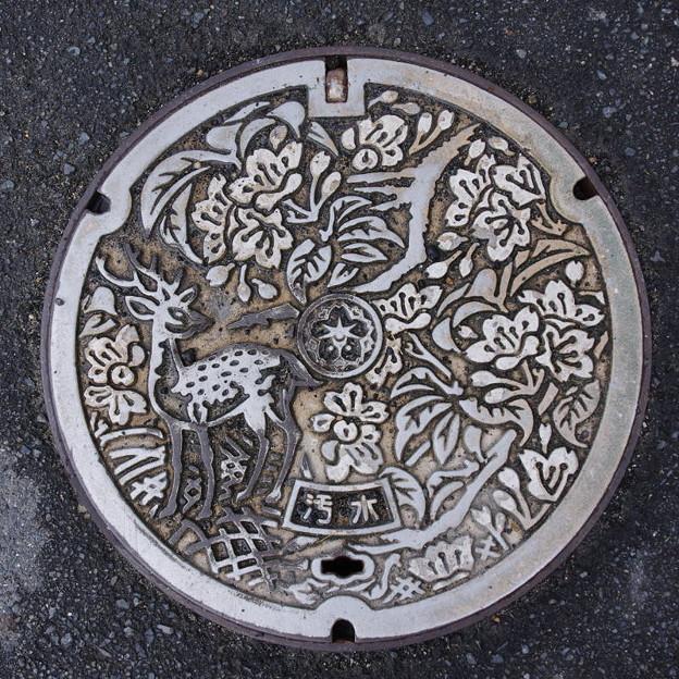 s3249_奈良市マンホール_汚水_t