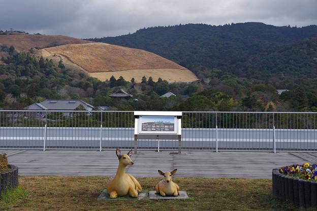 s3278_奈良県庁屋上から東側と鹿のモニュメント