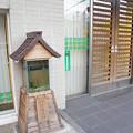 Photos: s3421_大和郡山市金魚水槽_京都銀行前