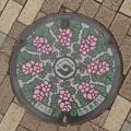 Photos: s7995_静岡市マンホール_たちあおい柄_カラー