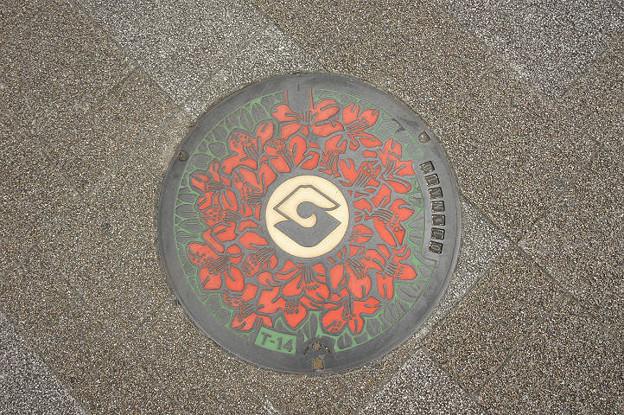 Photos: s7965_静岡市マンホール_カラー2色
