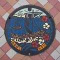 Photos: s6101_船橋市マンホール_うすい_カラー
