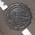 Photos: s8226_三条市マンホール_松・ヒマワリ花柄_t